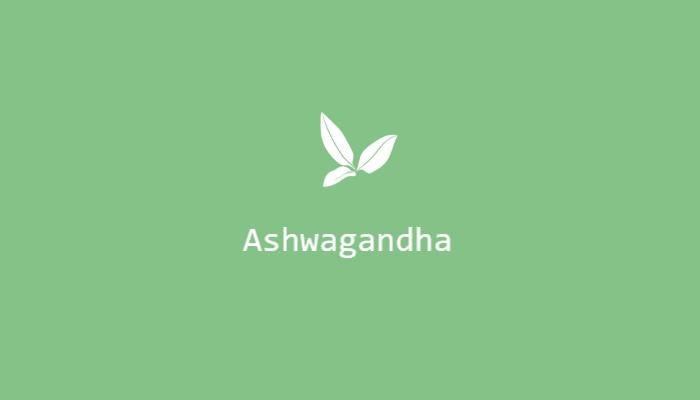 Ashwagandha znana jako żeń szeń indyjski